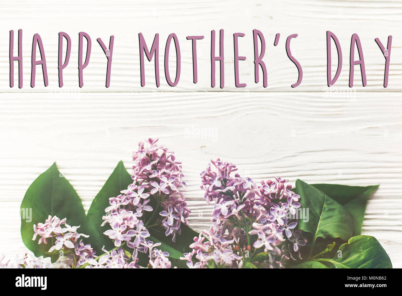 Happy mothers day text sign simple greeting card spring flat happy mothers day text sign simple greeting card spring flat lay image beautiful lilac flowers on rustic white wooden background top view space f kristyandbryce Choice Image