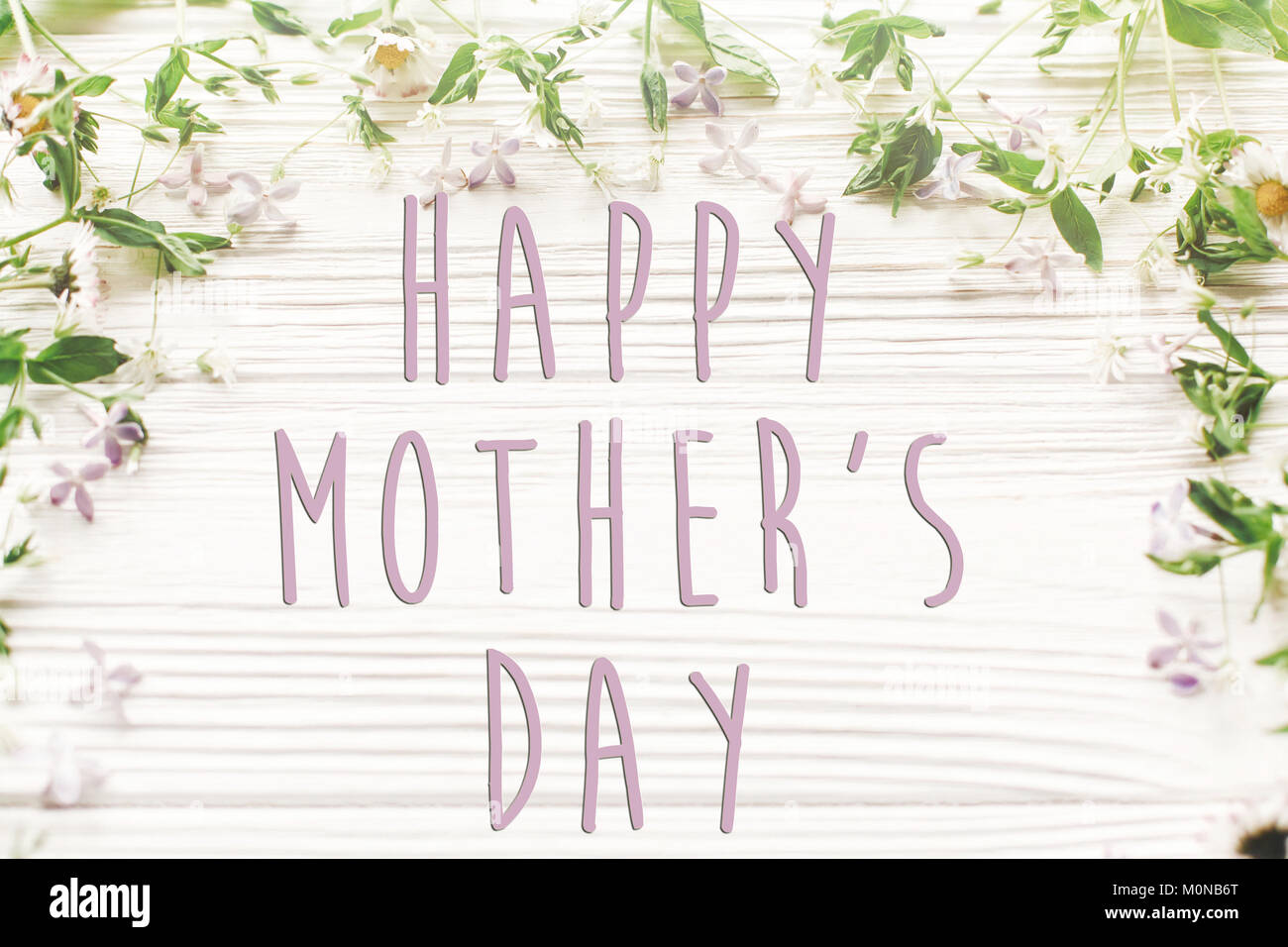 Happy mothers day text sign simple greeting card spring flat happy mothers day text sign simple greeting card spring flat lay fresh daisy lilac flowers and green herbs frame on white wooden rustic background kristyandbryce Choice Image