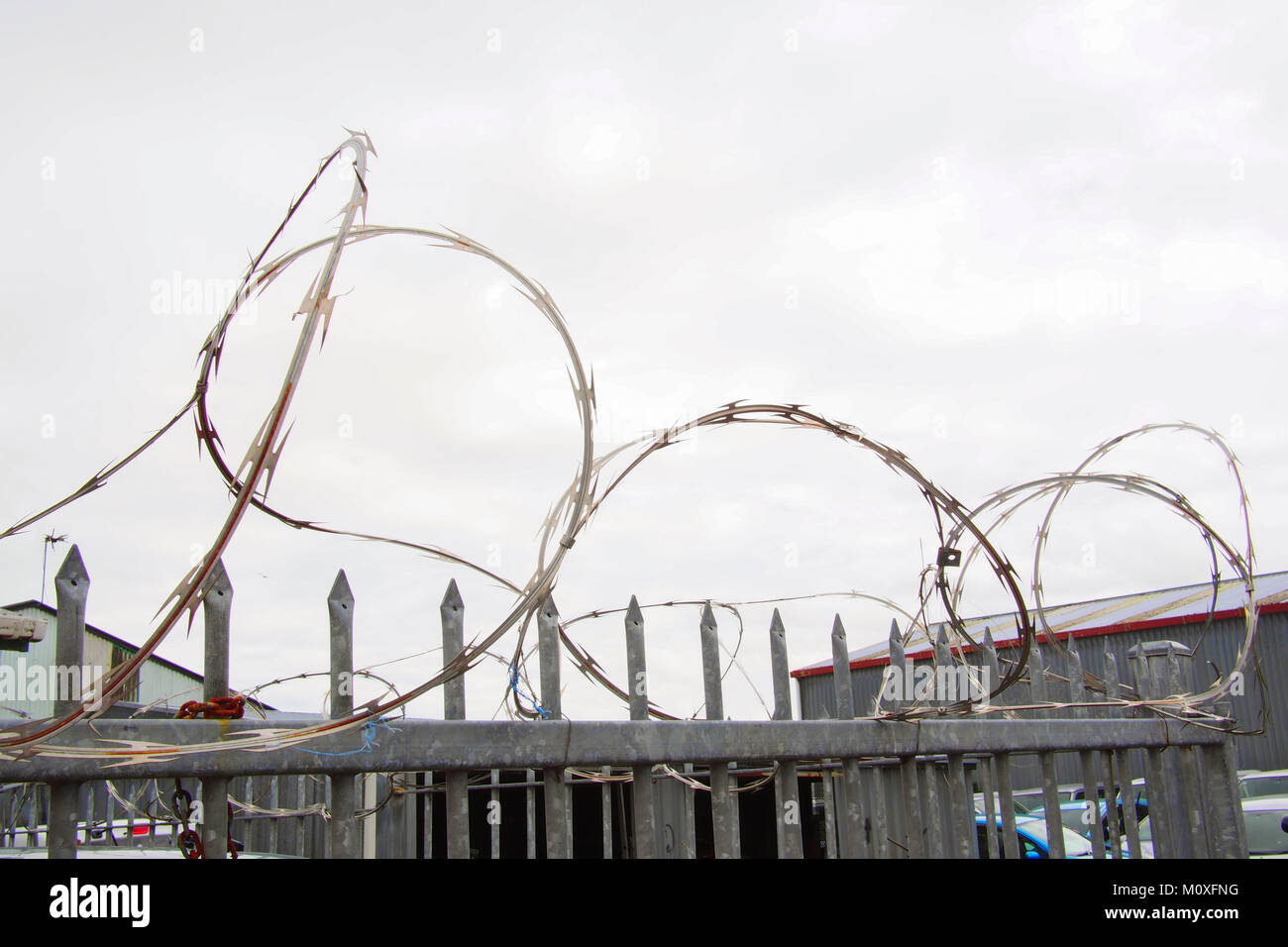 Barbed Wire Fence And Cloudy Sky Stock Photos & Barbed Wire Fence ...