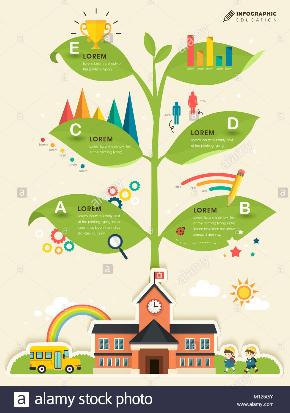 school knowledge tree education infographic template design stock