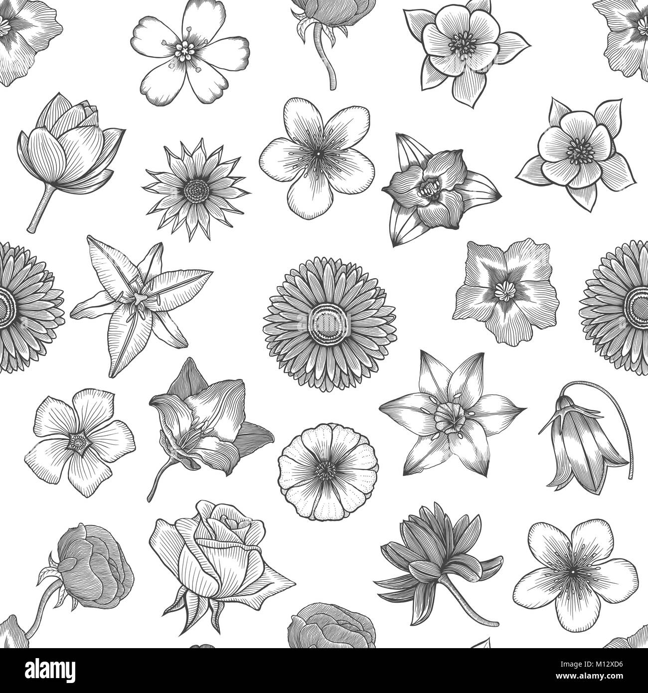 Spring Flowers Seamless Floral Pattern Background Hand Drawing