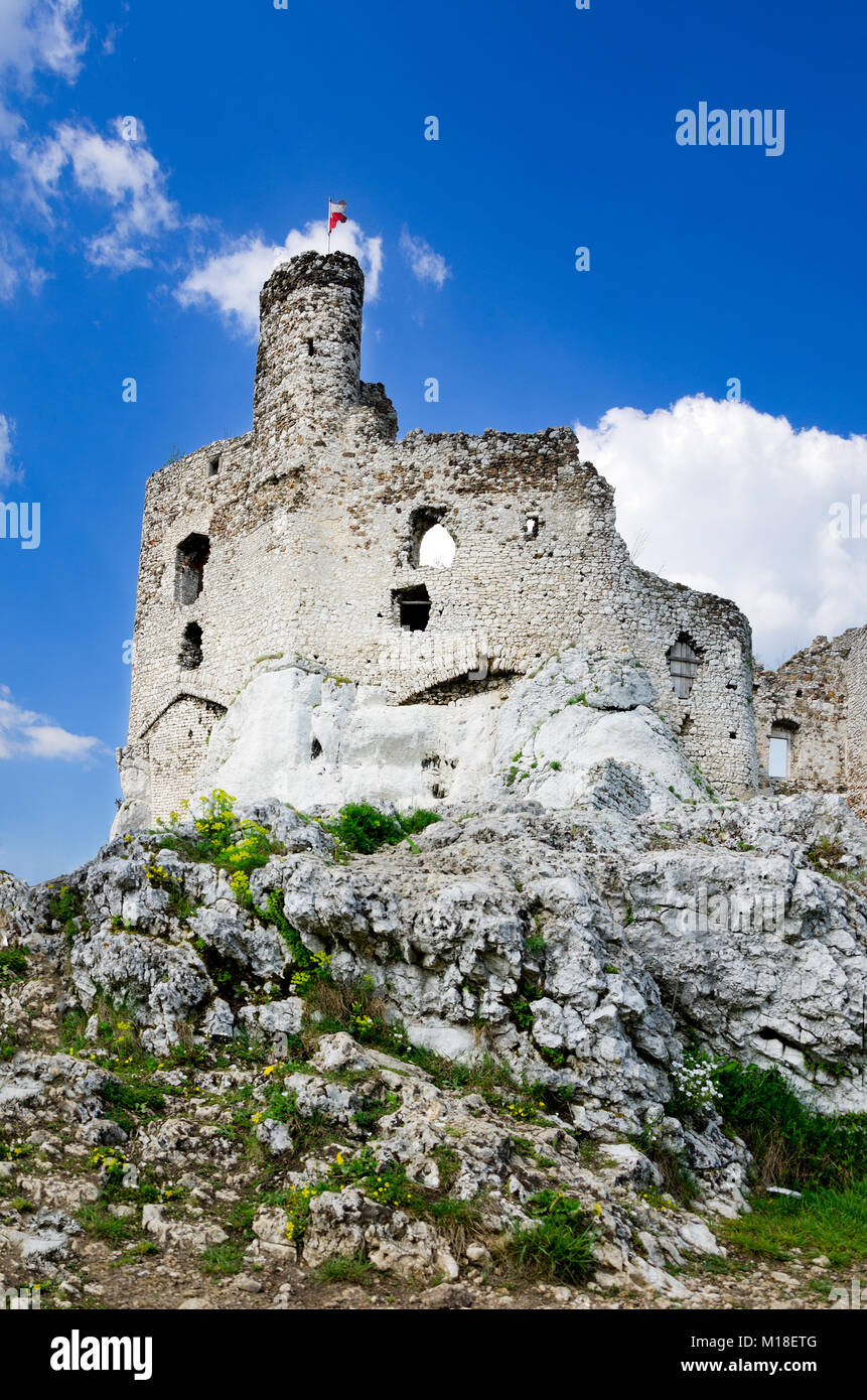 Ruins Of Medieval Castle In Mirow Part Trail The Eagles Nests Polish Jurassic Highland Lesser Poland Voivodeship Europe