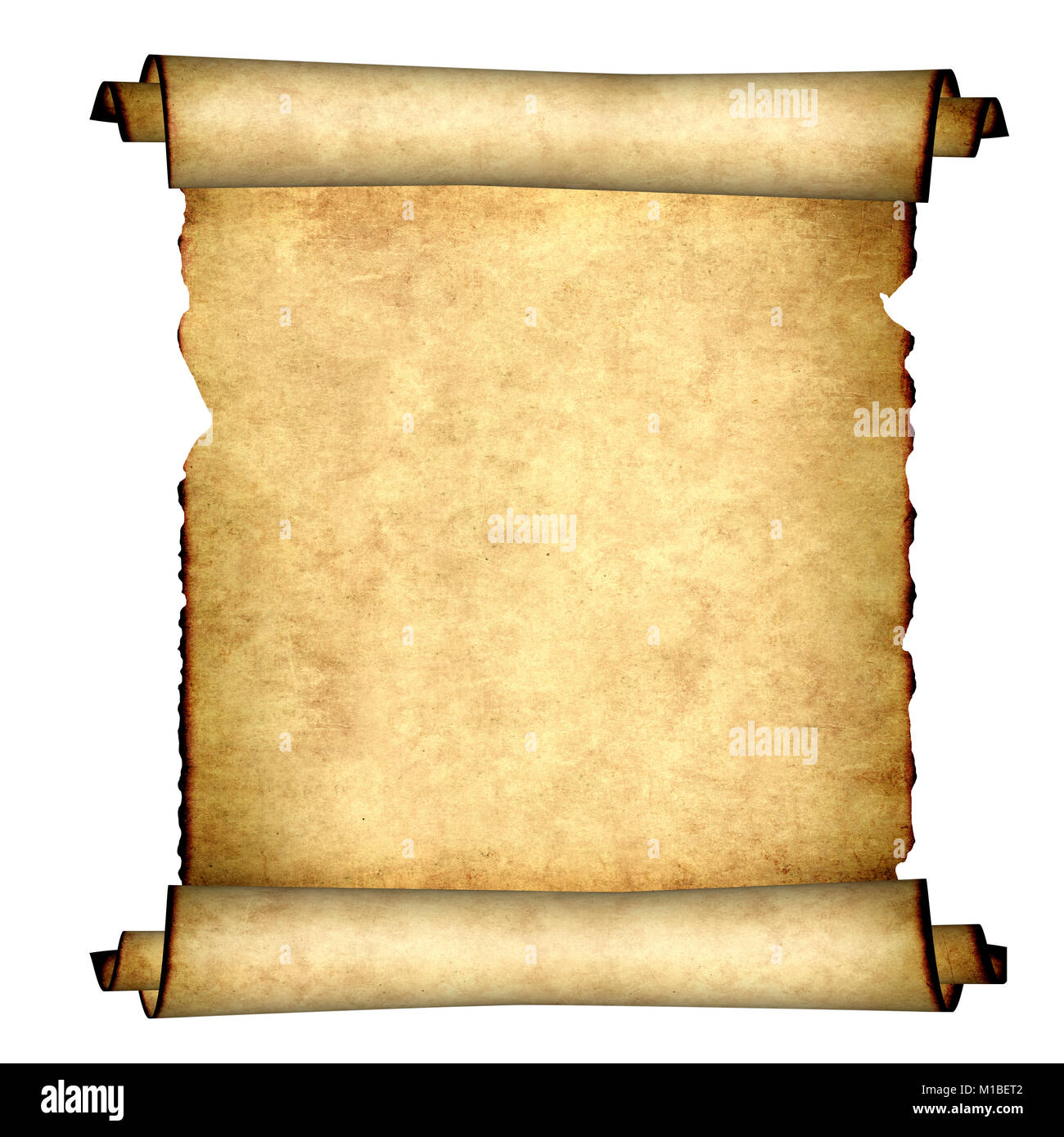 old parchment isolated on white background copy space for your