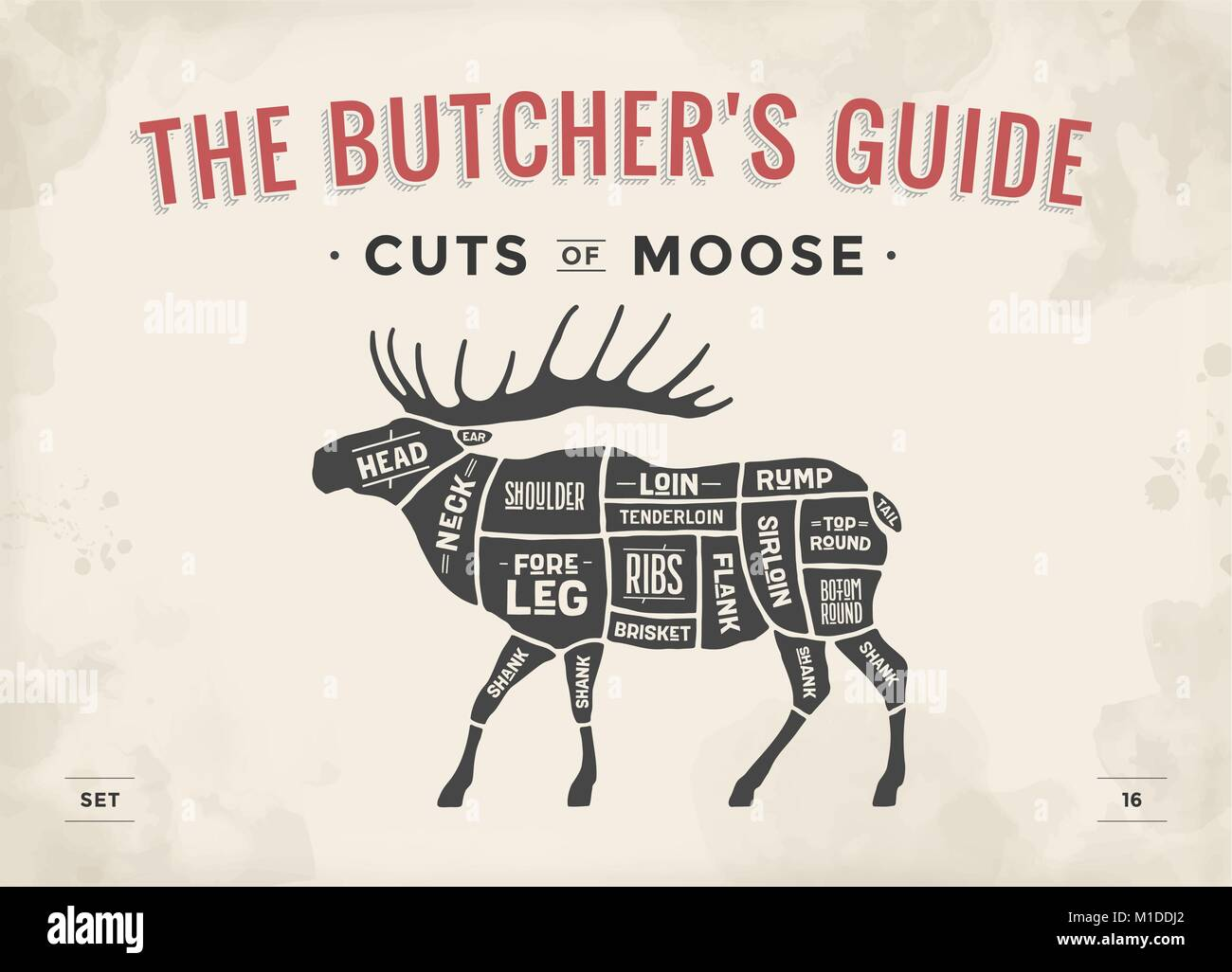 cuts of meat diagram stock photos & cuts of meat diagram ... diagram of parts of toilet diagram of moose cuts #5