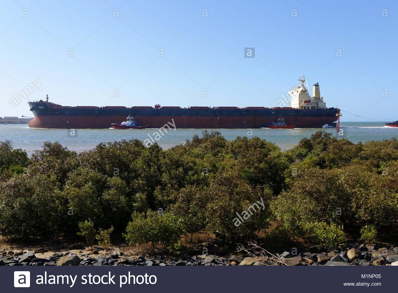 scene escorts port hedland
