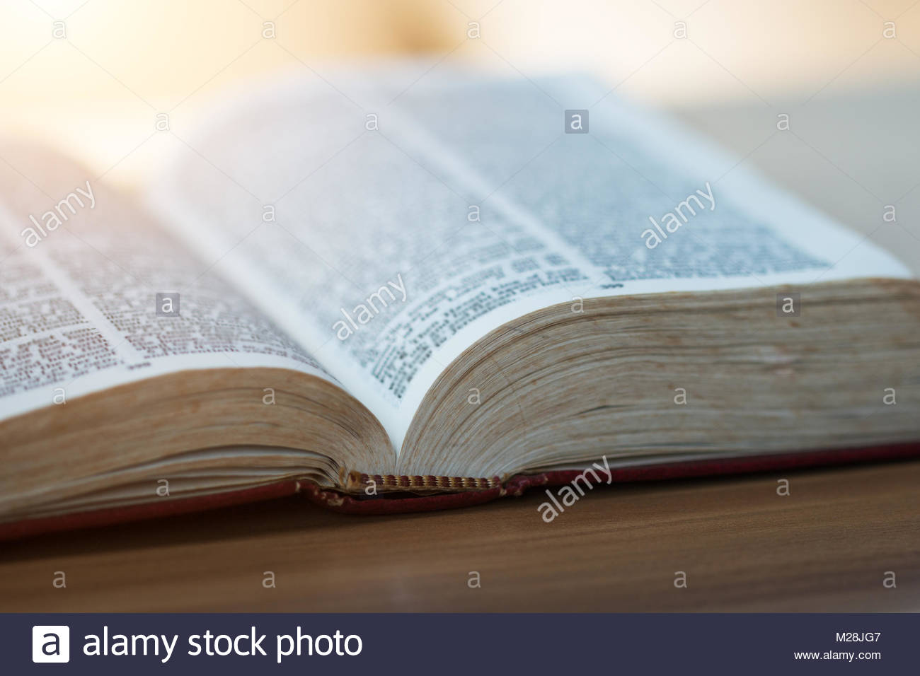 an analysis of women in the holy bible A good study bible can prove to be an invaluable companion as you dive into  god's word but with so many options to choose from, where.