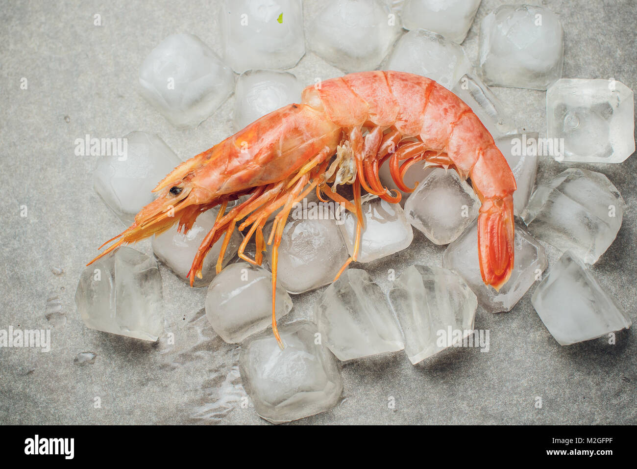 Argentine Raw Shrimp Seafood Food Red Ice Stock Photo 173696615 Alamy