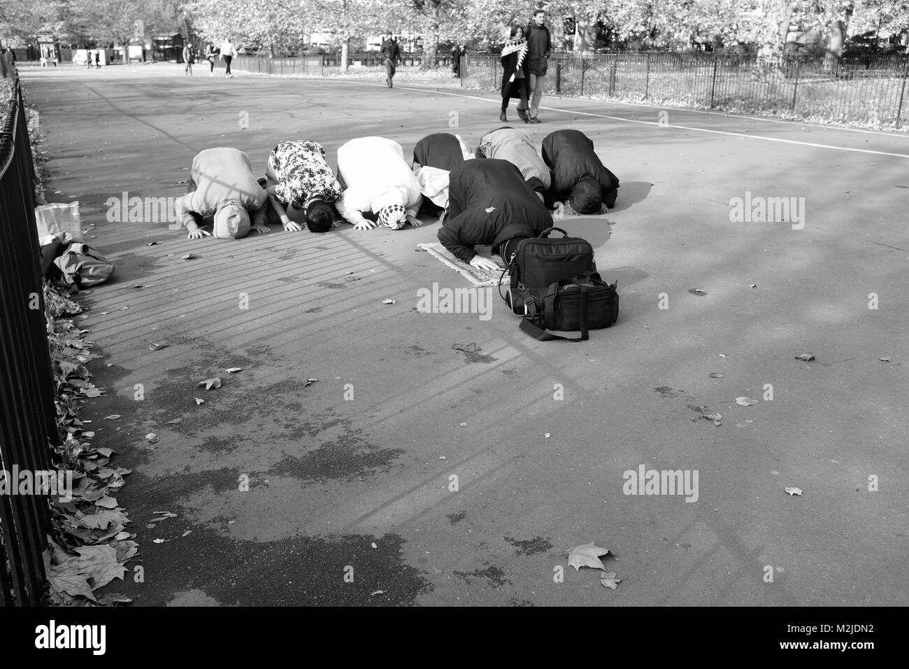 muslim singles in hyde park Watch: uk woman arrested at home after asking police why muslims were  allowed to break the law caldron pool may 29, 2018.