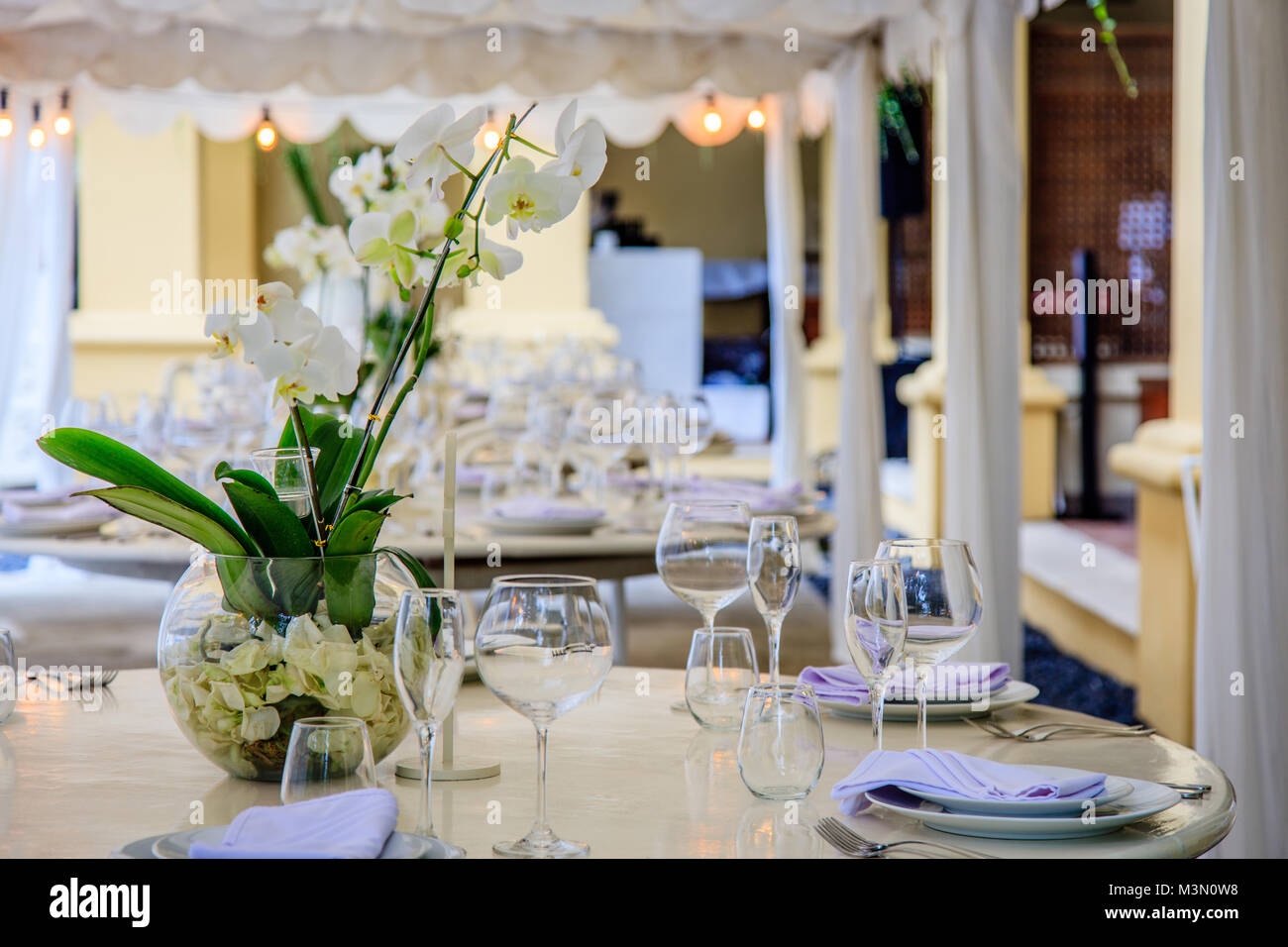 Set tables for a white wedding dinner decorated with orchids set tables for a white wedding dinner decorated with orchids vases glasses plates napkins cutlery reviewsmspy