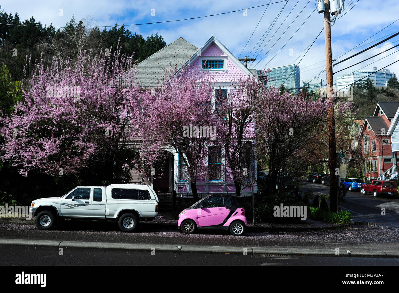 A Pink Car Is Parked Beneath A Tree With Pink Flowers In Portland
