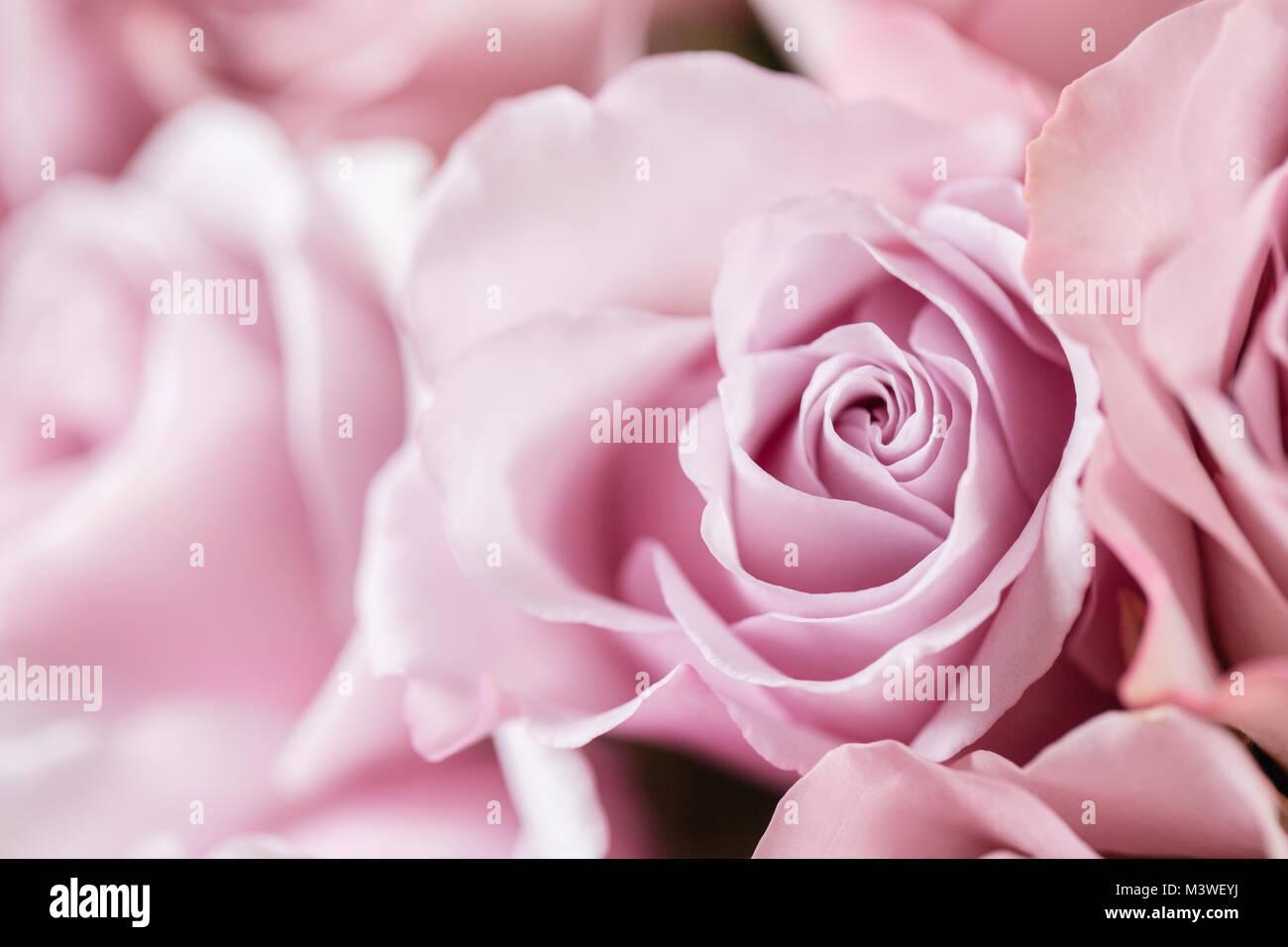 Vase Legras Decor De Roses