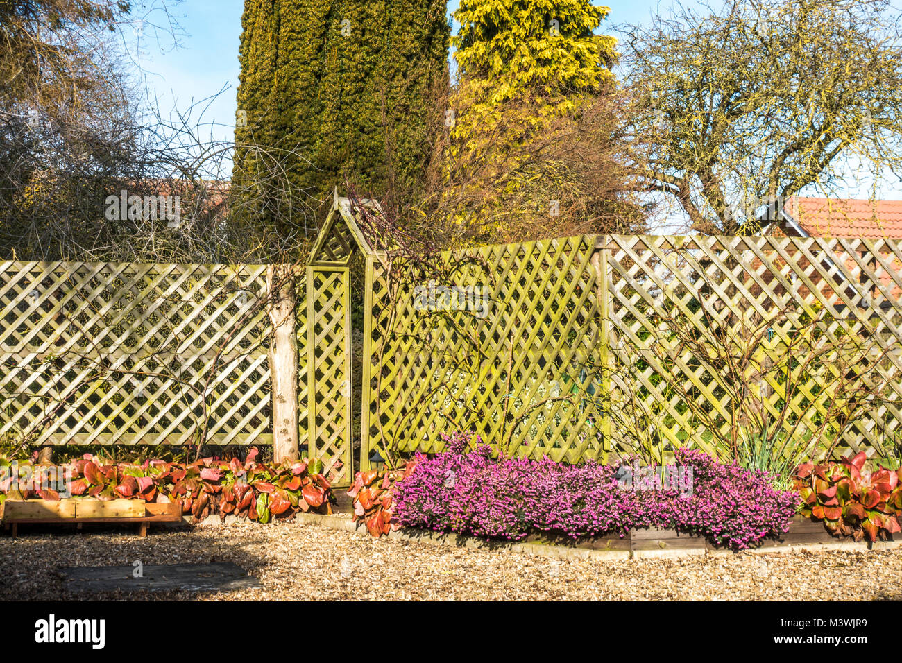trellis fencing stock photos trellis fencing stock images alamy