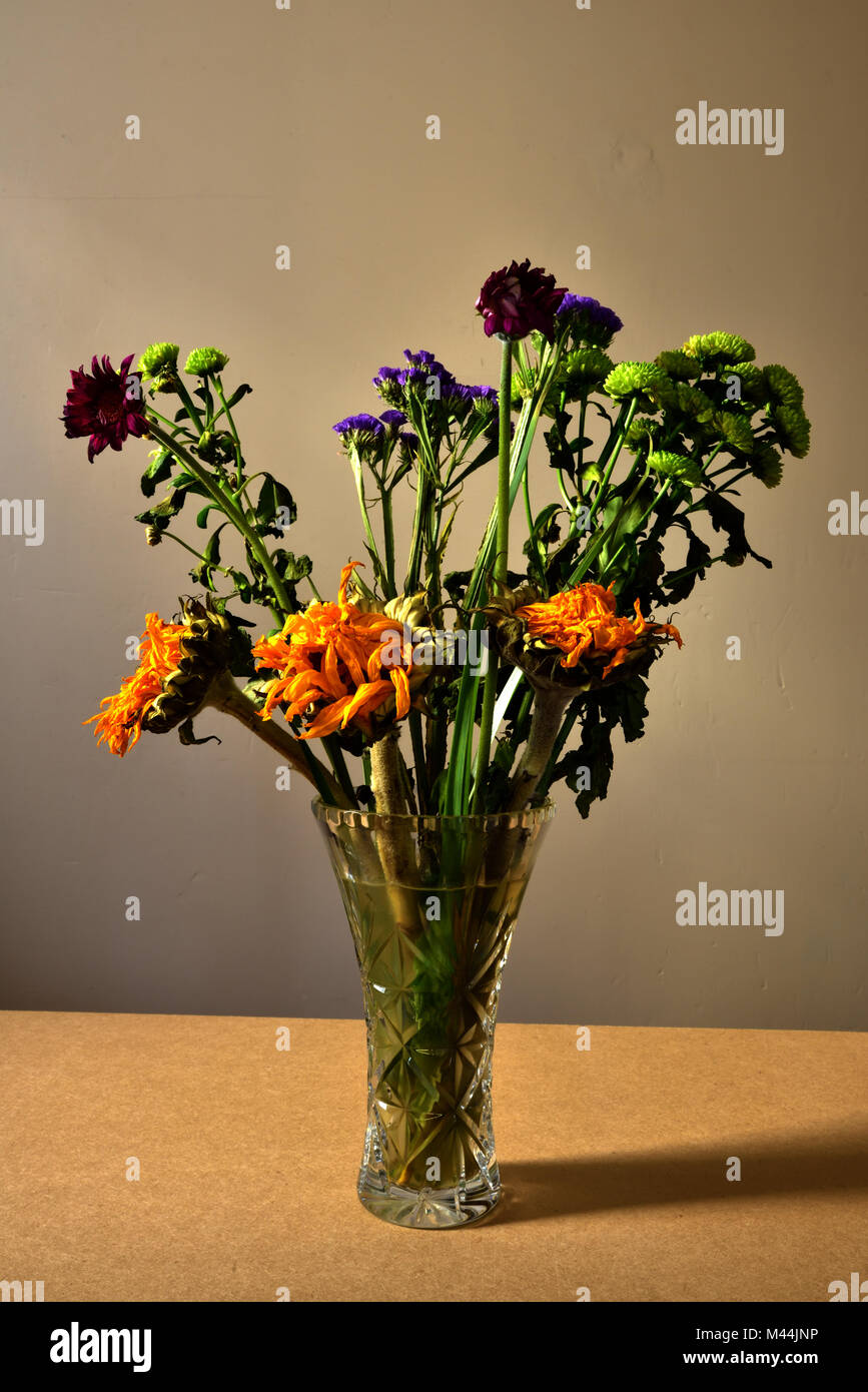 Dead Flowers In Vase Stock Photos Amp Dead Flowers In Vase