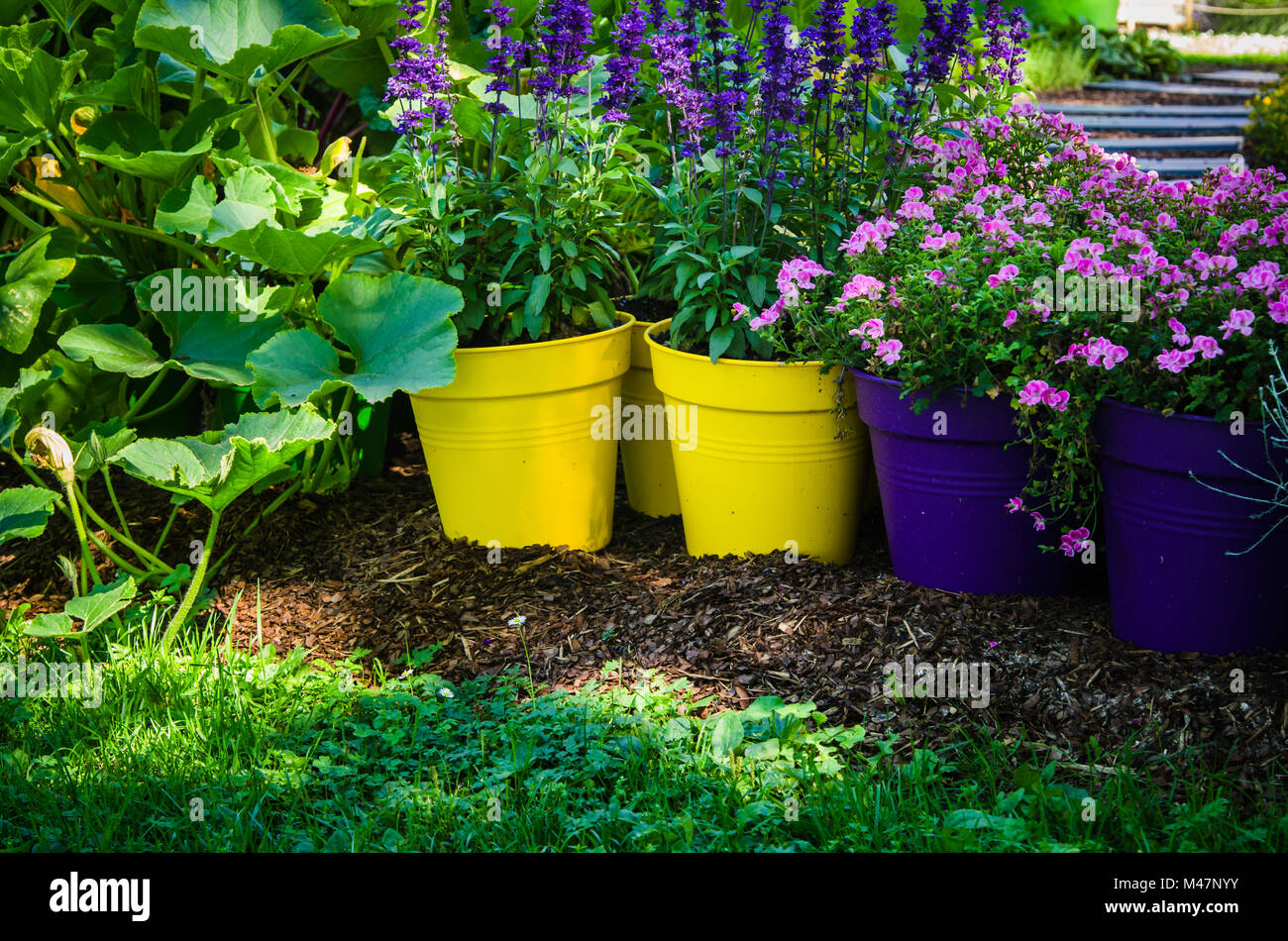 Beautiful Flowers Pots Stand In The Garden Close Up Stock Photo