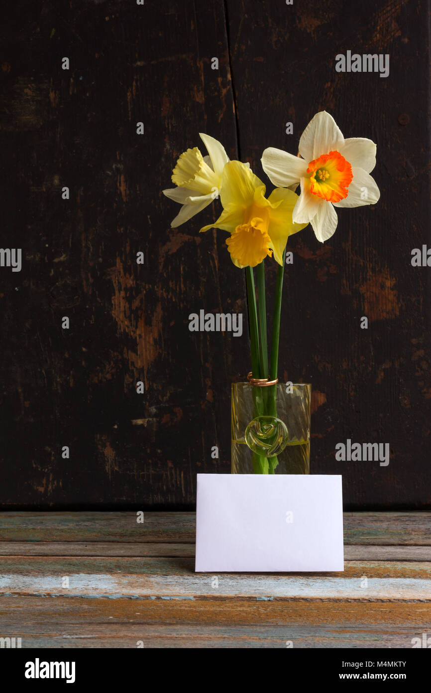 Three Spring Flower Yellow And White Daffodils With Golden Wedding