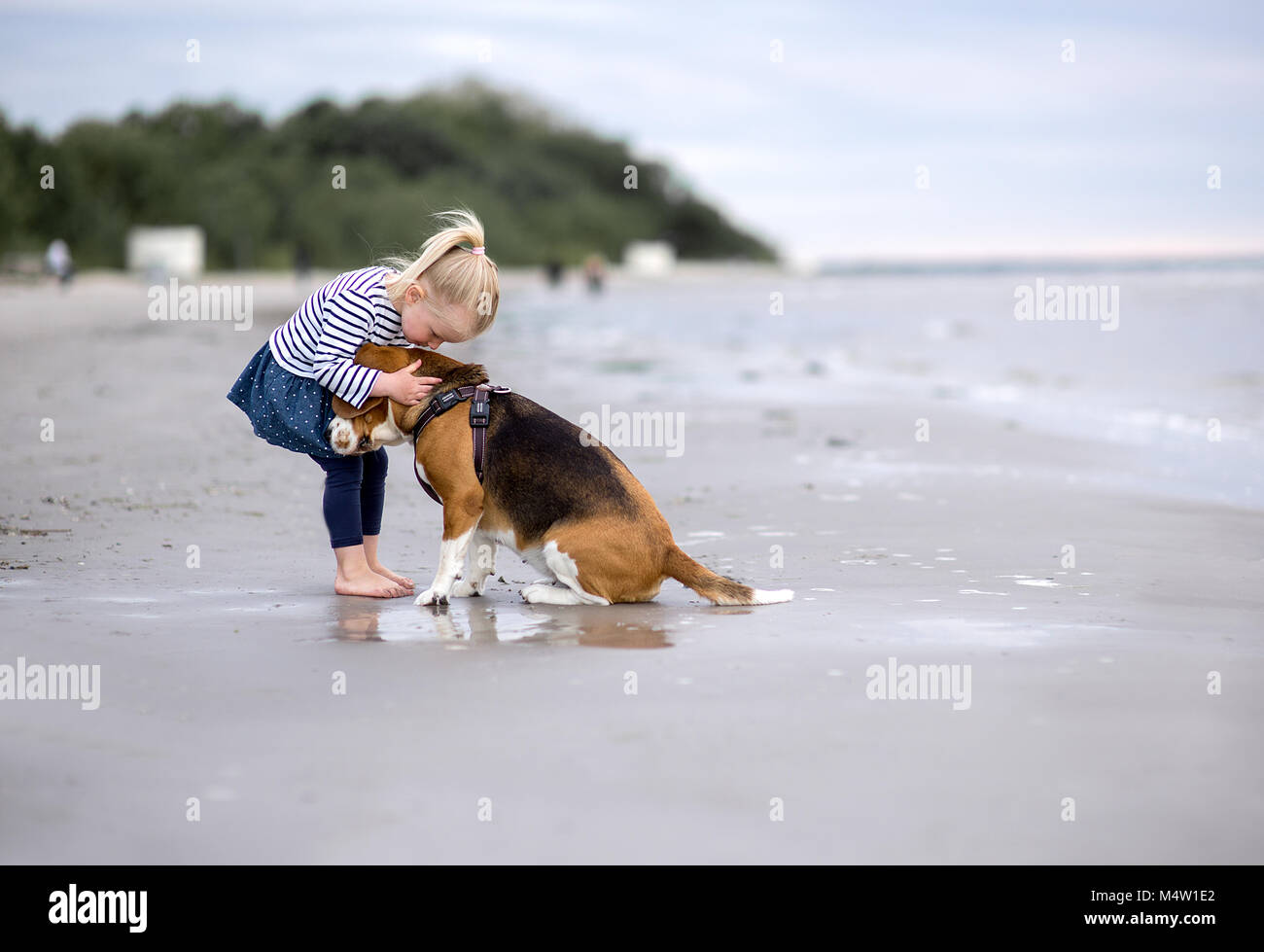 Most Inspiring Sea Beagle Adorable Dog - girl-and-cute-dog-beagle-by-the-sea-M4W1E2  You Should Have_208146  .jpg