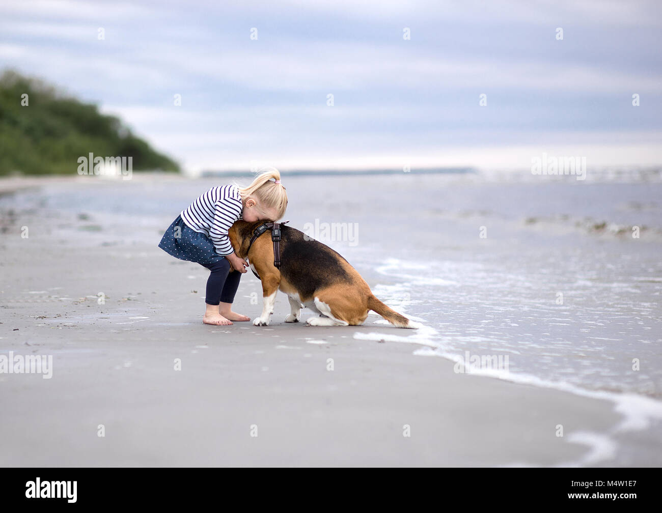 Most Inspiring Sea Beagle Adorable Dog - girl-and-cute-dog-beagle-by-the-sea-M4W1E7  You Should Have_208146  .jpg