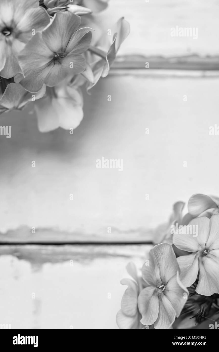 Flowers On A Wooden Table Black And White Poster Stock Photo