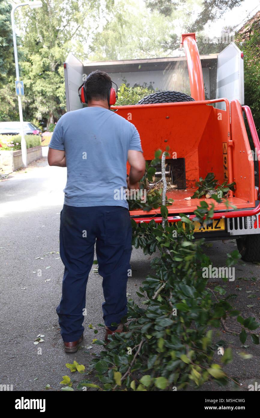 Wood Shredder Stock Photos Amp Wood Shredder Stock Images