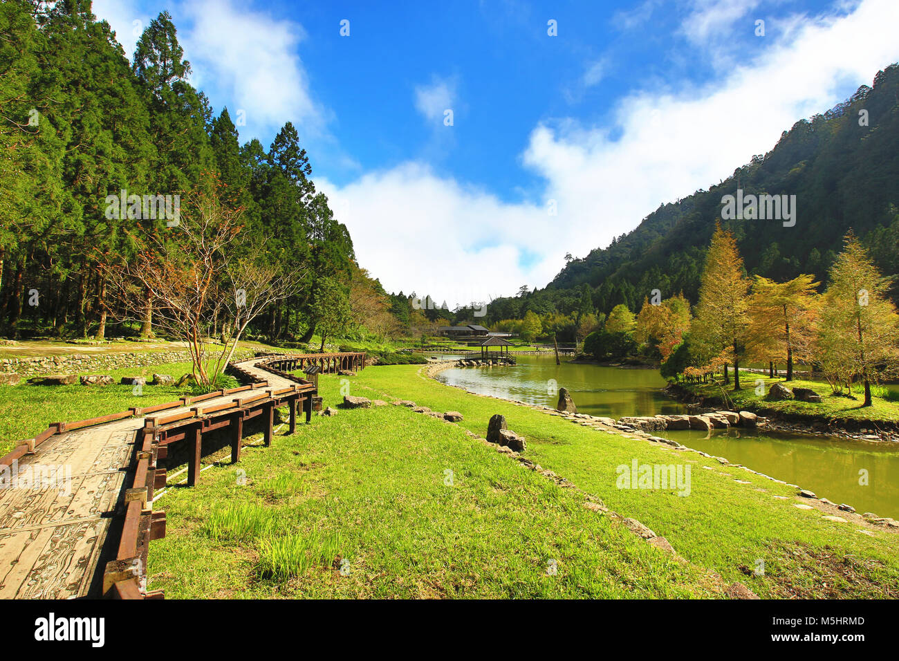 Beautiful lake scenery with winding path and colorful trees in ...