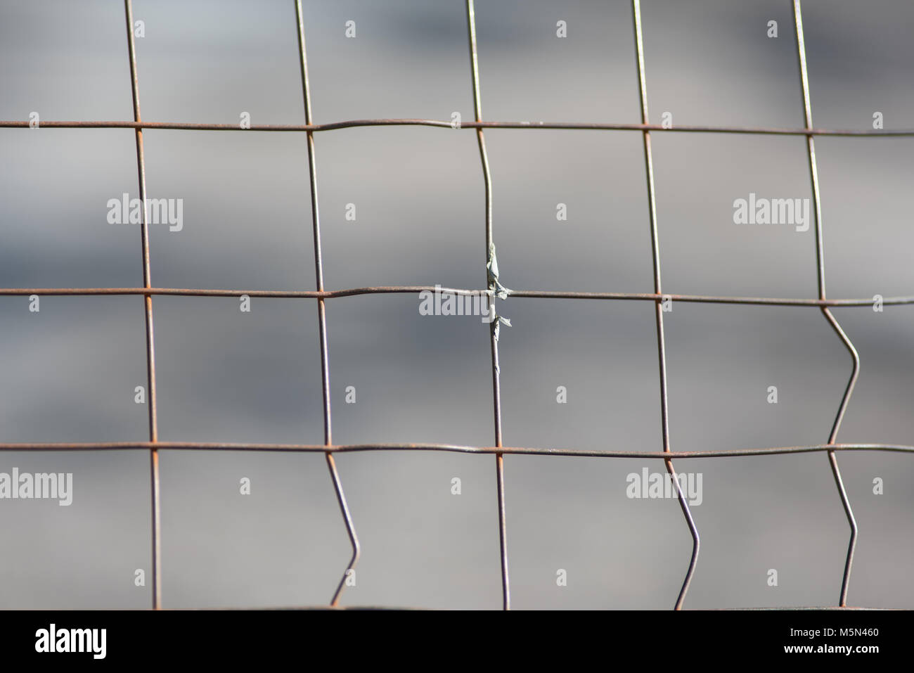 Private Area Metal Fence Stock Photo 175641256 Alamy