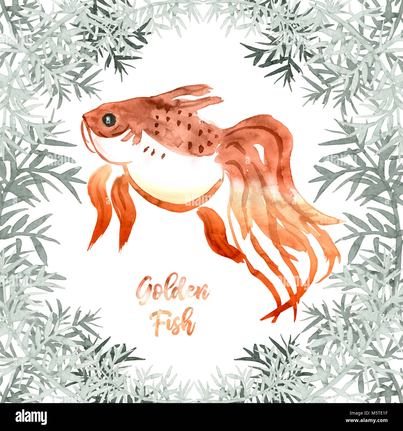 watercolor golden fish with plant frame and sign Stock Photo ...