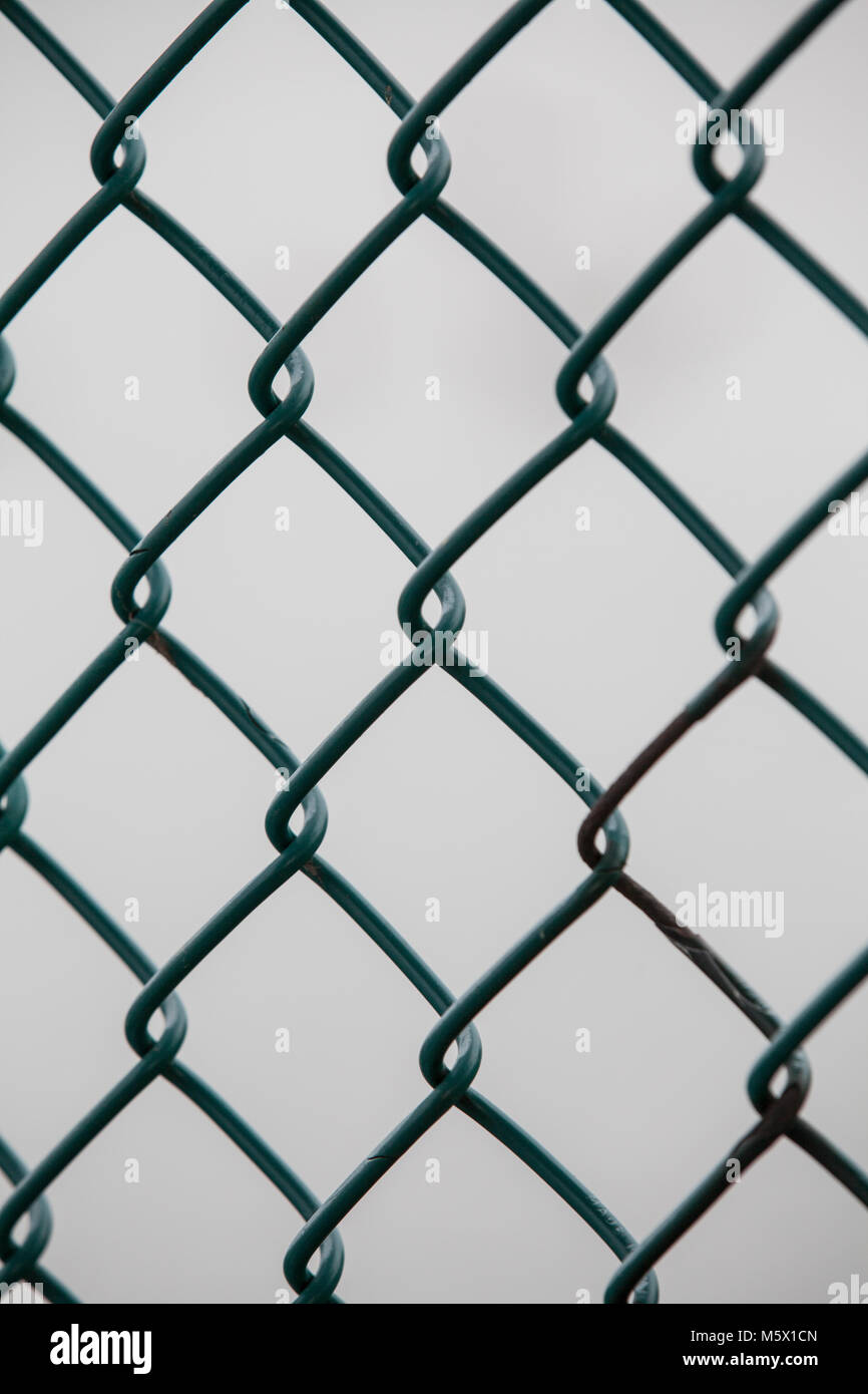 Close up of a metal chicken wire fence Stock Photo: 175748853 - Alamy