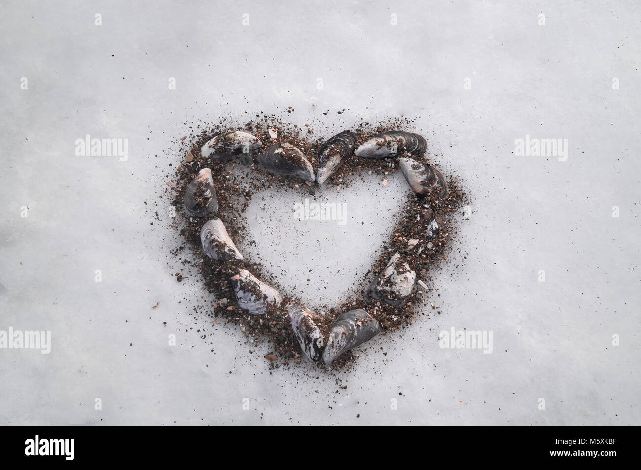 Heart of sea shells on the snow as a symbol of love love of the heart of sea shells on the snow as a symbol of love love of the sea and the expectation of the coming of spring congratulations on st valentines d biocorpaavc Images