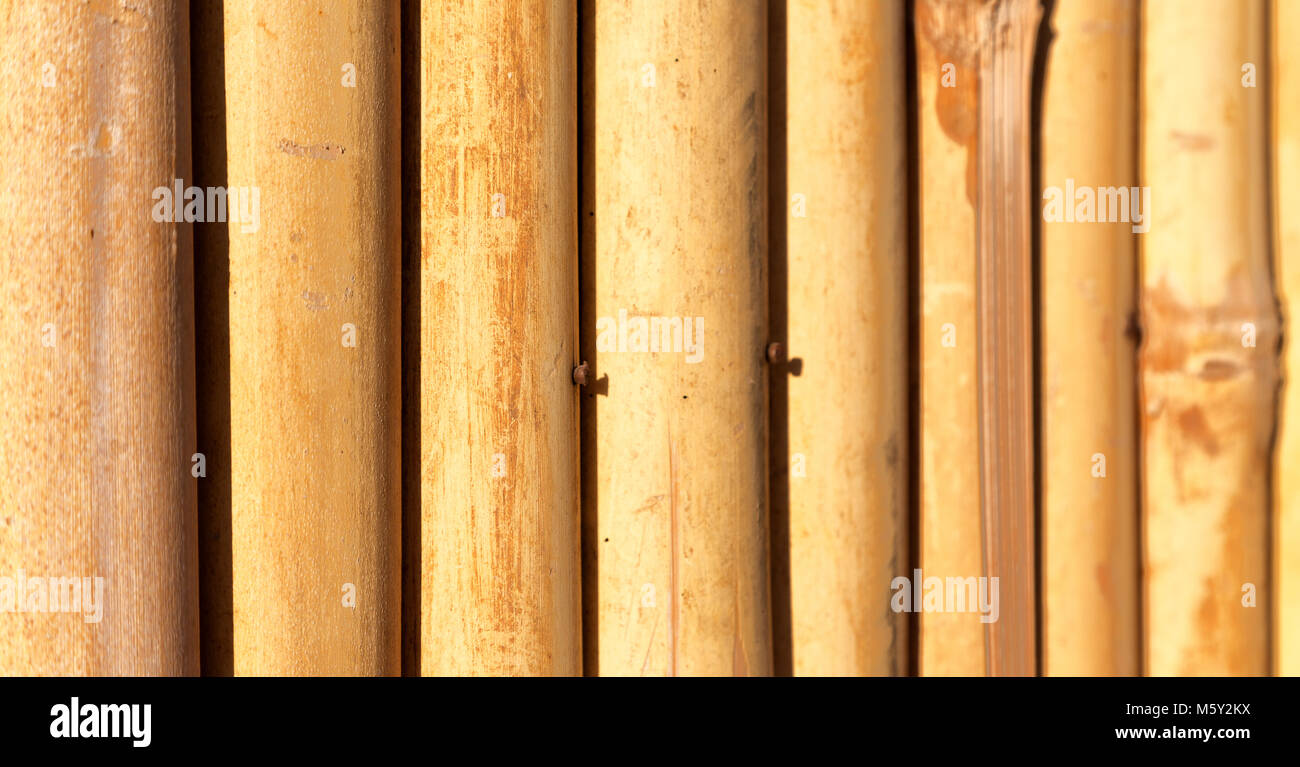 Fantastic Bamboo Wall Decoration Ideas Composition - The Wall Art ...