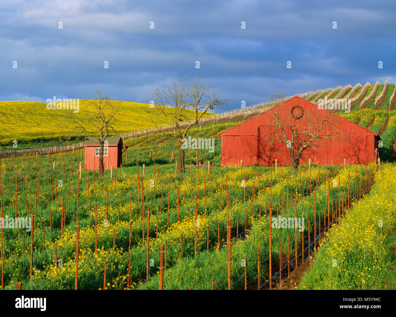 where is napa valley california