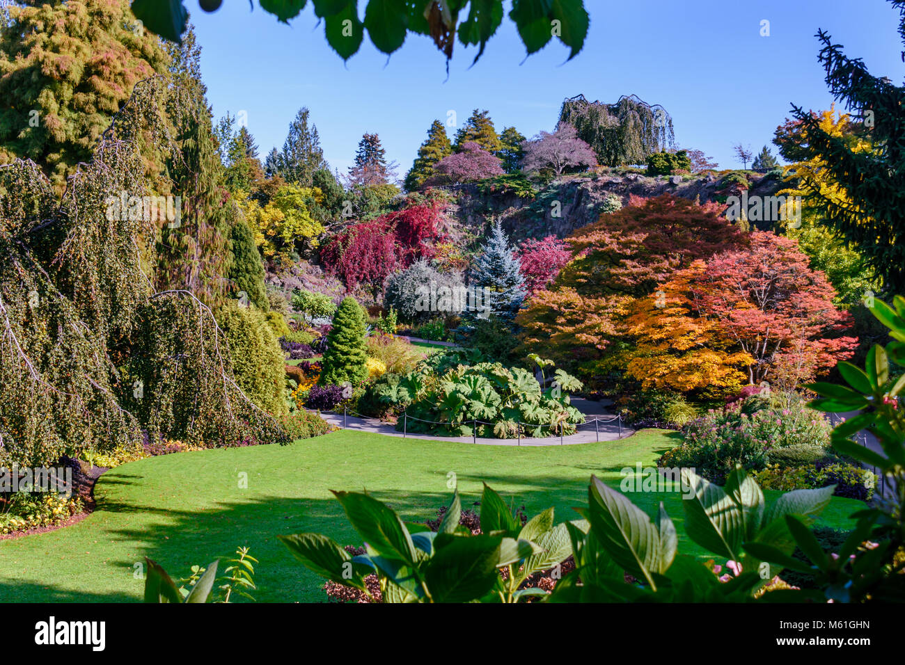 Arboretum with colorful trees and bushes, green lawn and blue sky on ...