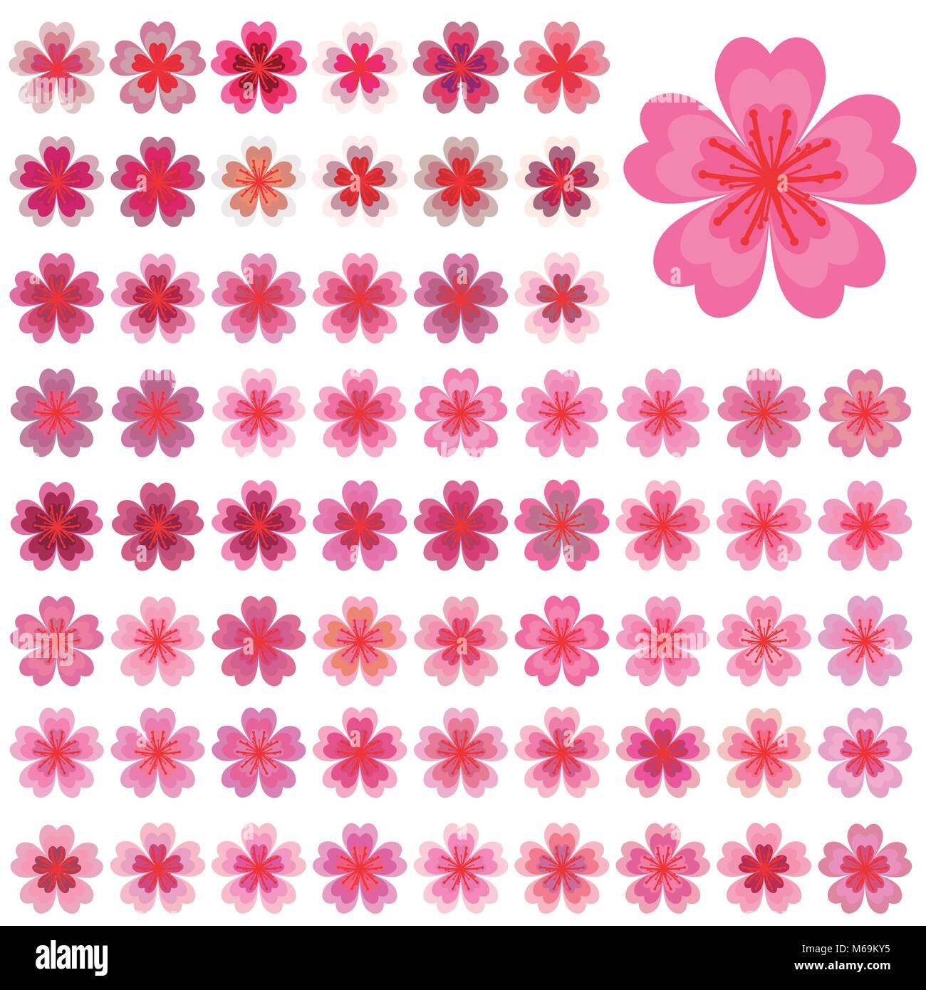 Isolated Flowers Of Sakura Set Cartoon Pink And White Blossoms Of