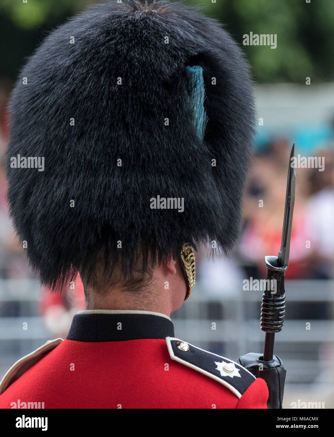 Queens Guard Bearskin Hat Bayonet During Trooping The Colour