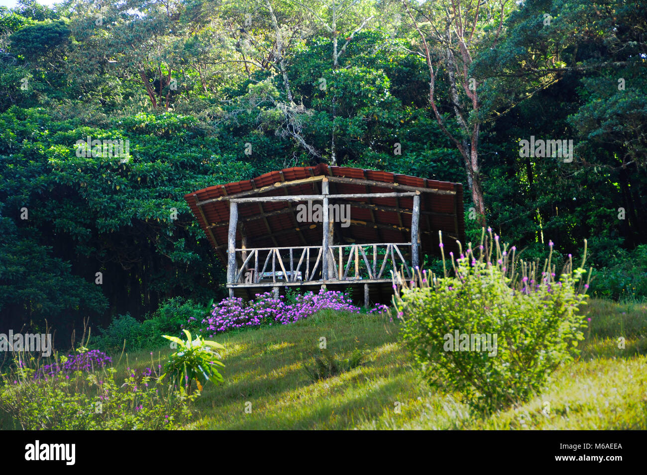 Yoga Hut On Bosque Caricias A Private Ecological Reserve Located
