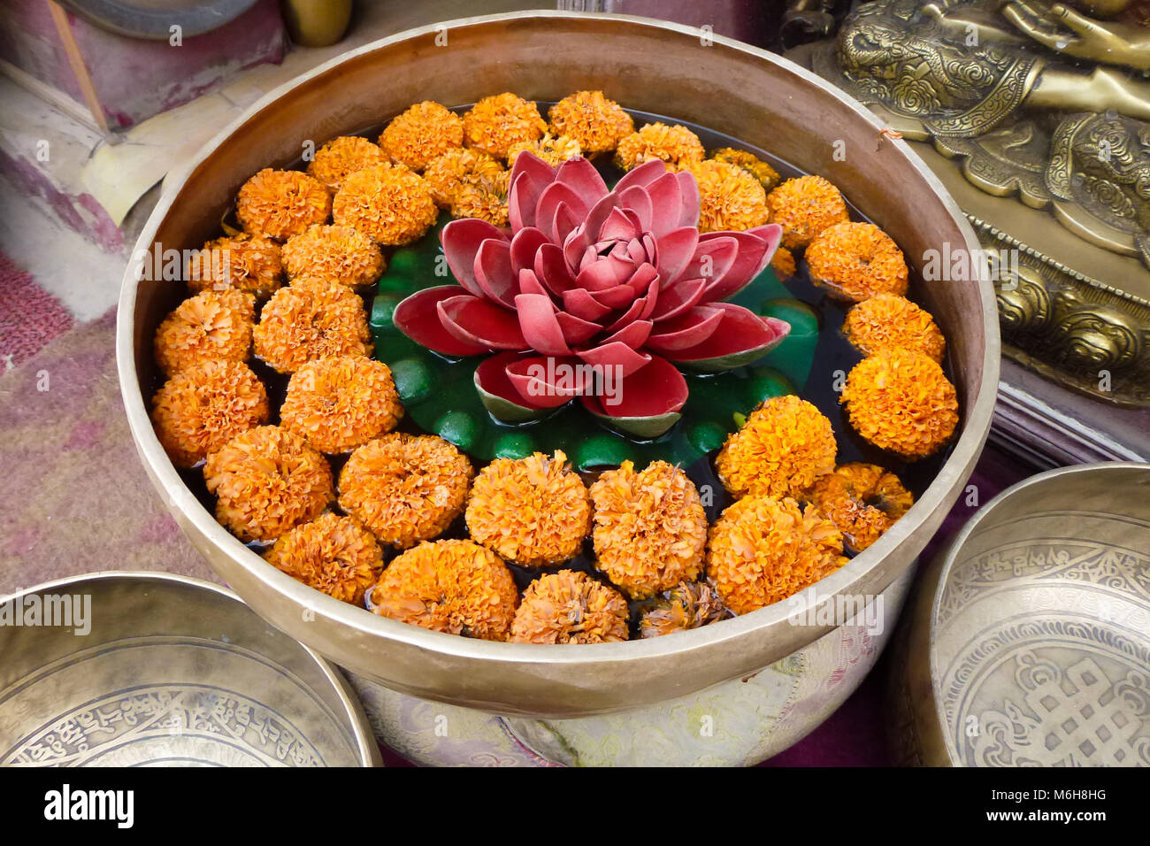 Sacred orange flowers in a bowl with lotus flower kathmandu nepal sacred orange flowers in a bowl with lotus flower kathmandu nepal izmirmasajfo