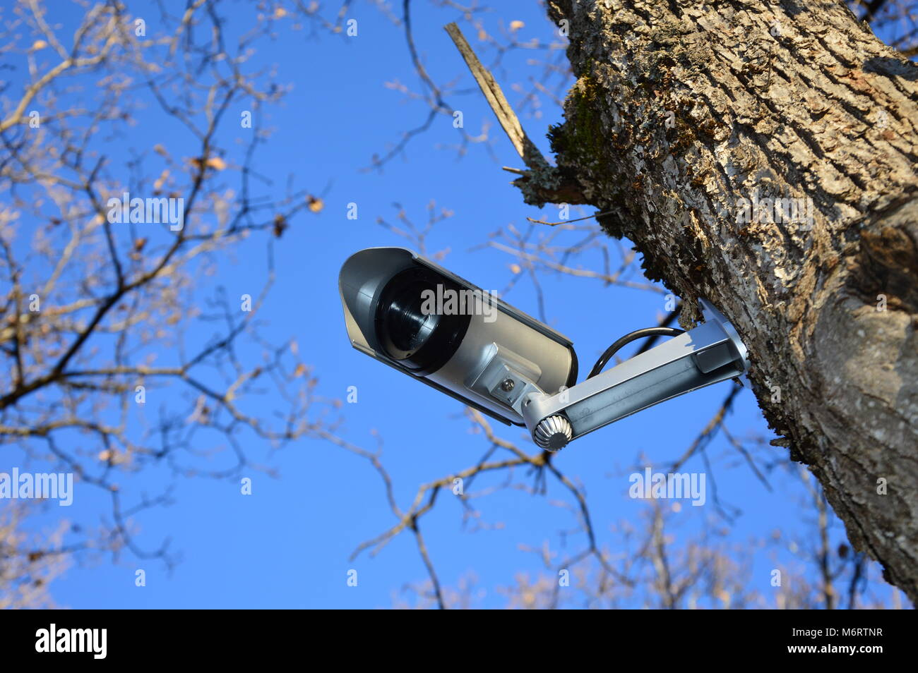 Supervision Stock Photos Amp Supervision Stock Images Alamy