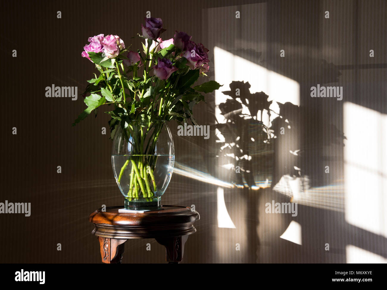 Burton upon trent stock photos burton upon trent stock images a vase of roses near a window with shadows hanbury tutbury burton upon reviewsmspy