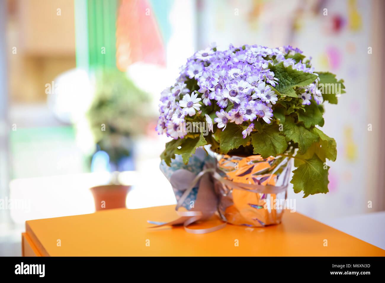 Purple ribbon flower . Beautiful bouquet of blue flowers in a small ...