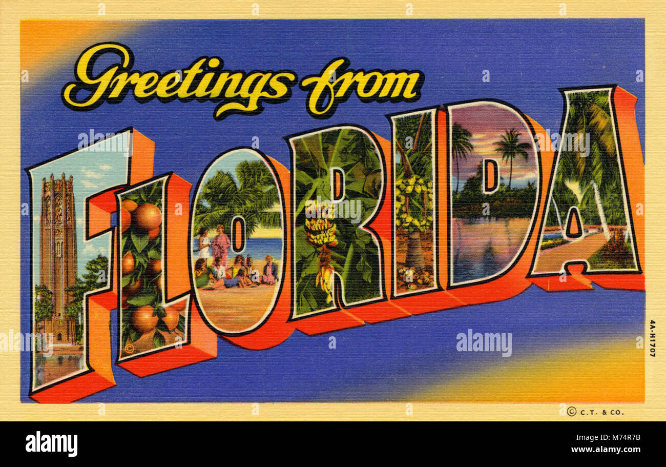 Greetings from florida blue and orange background nby 9436 stock greetings from florida blue and orange background nby 9436 kristyandbryce Image collections