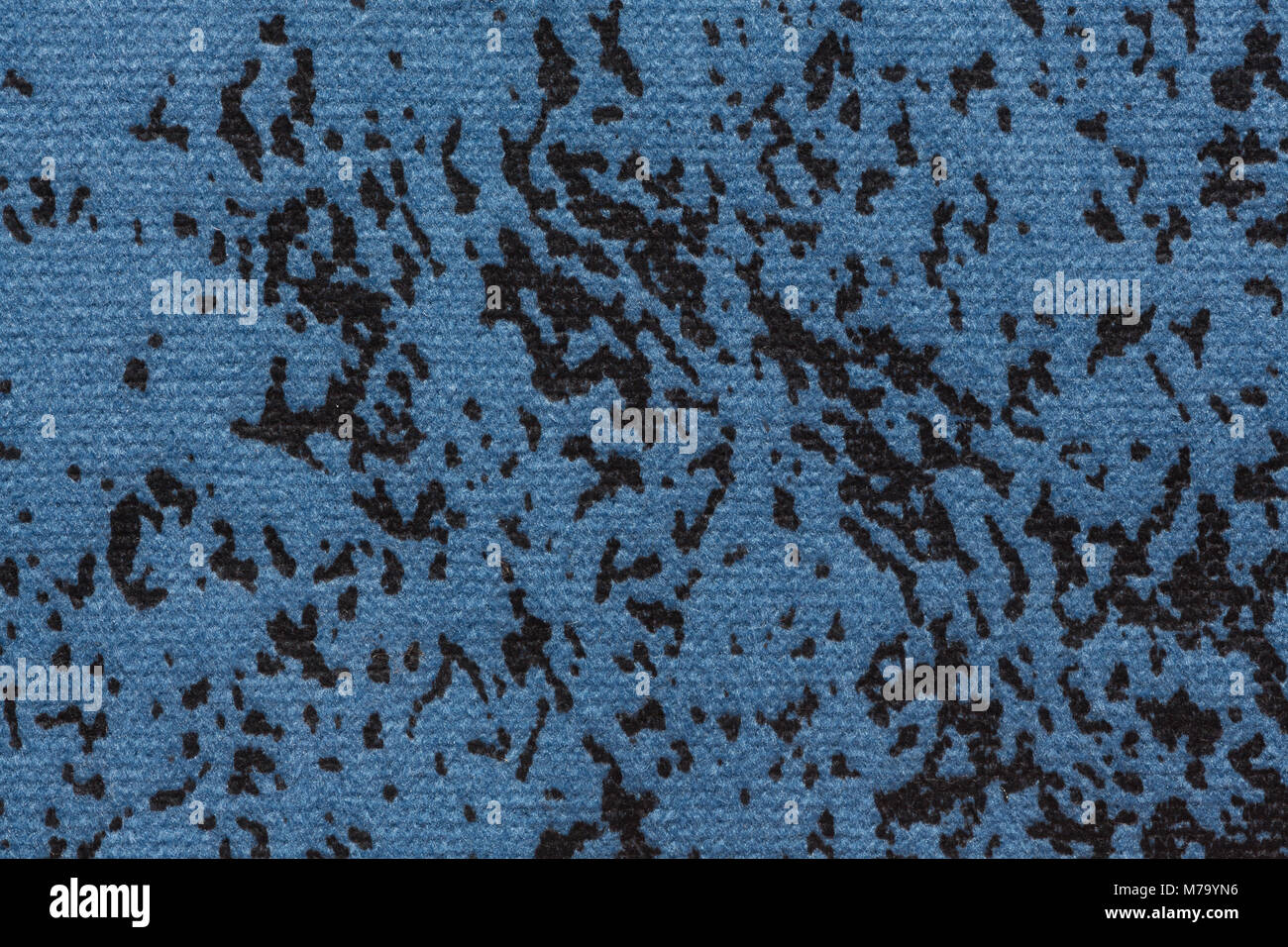Blue Speckled Stock Photos & Blue Speckled Stock Images ...