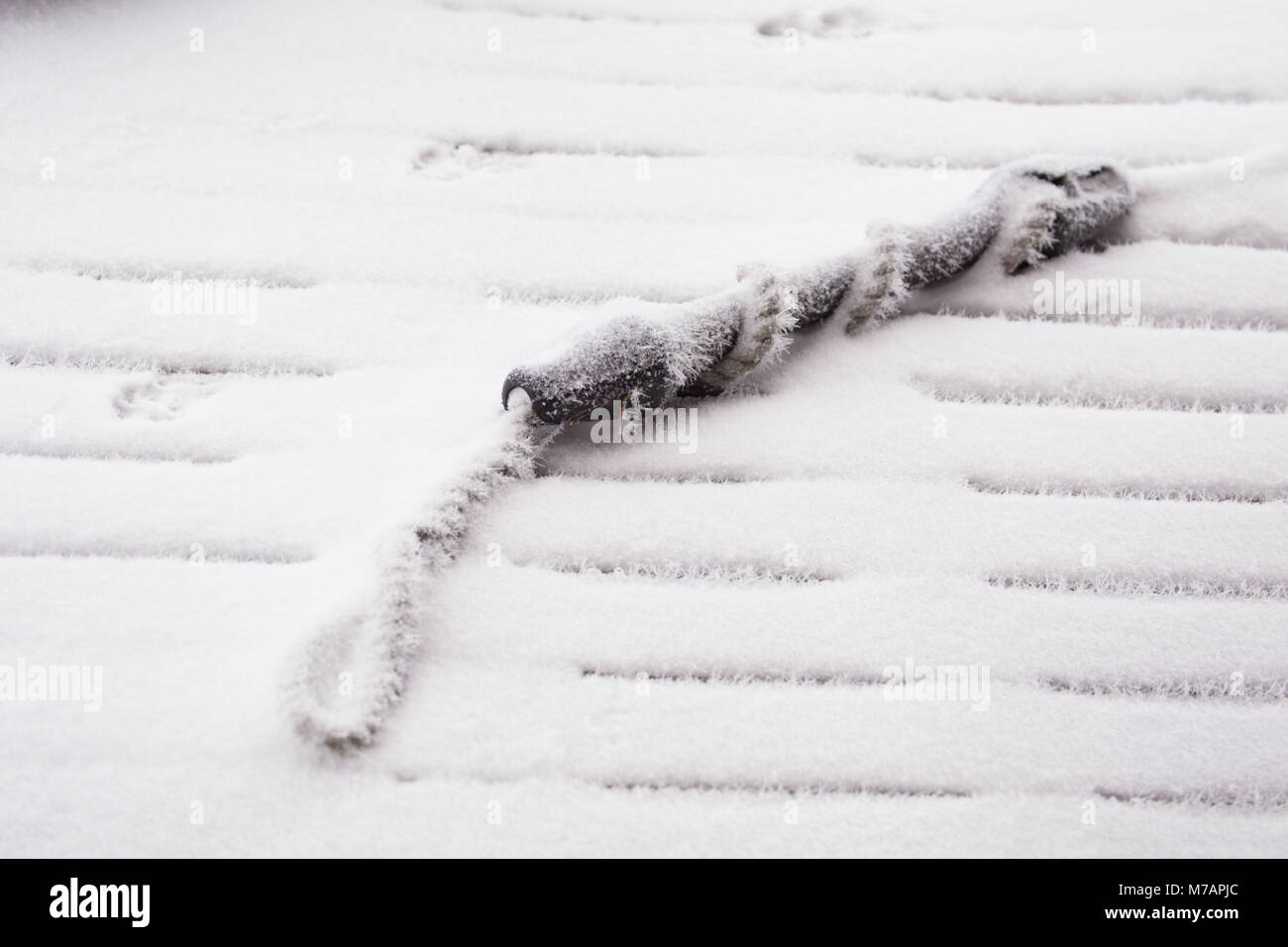 Frost covered rope stock photos frost covered rope stock images frost covered boat fastening rope on a wooden pier stock image buycottarizona Images
