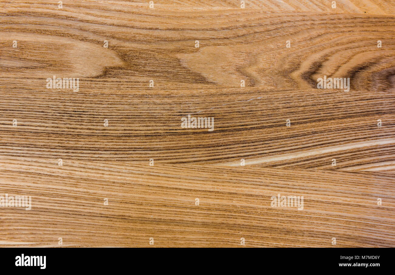 The Texture Of Wood Flooring Oak Ash And Elm Trees