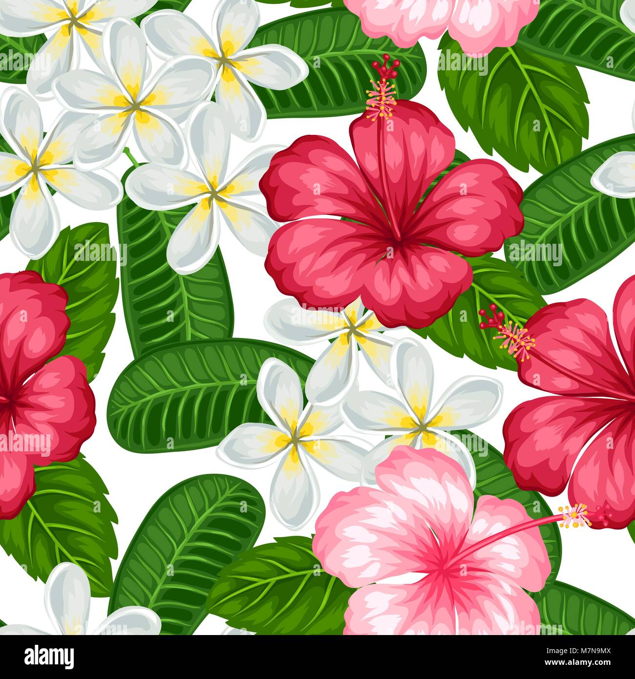 Seamless Pattern With Tropical Flowers Hibiscus And Plumeria Stock