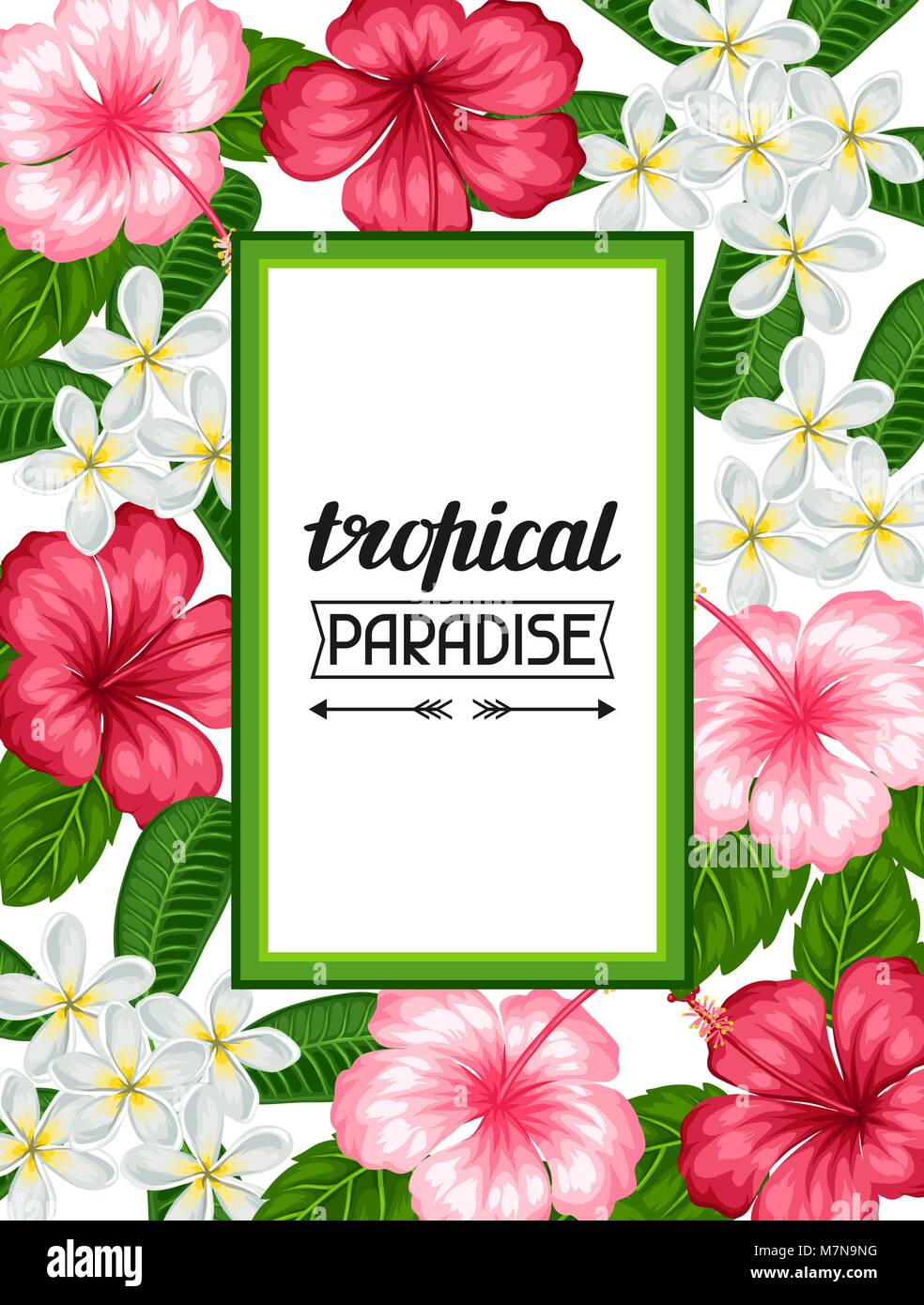 Frame with tropical flowers hibiscus and plumeria. Image for holiday ...