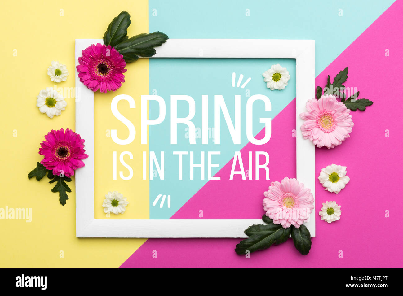 Welcome card stock photos welcome card stock images alamy welcome spring themed pastel coloured background spring time floral flat lay minimalism greeting card kristyandbryce Choice Image