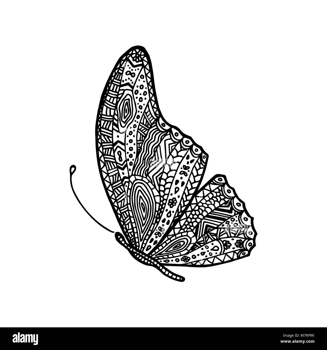 Vector Hand Drawing Butterfly Coloring Page Book For Adult