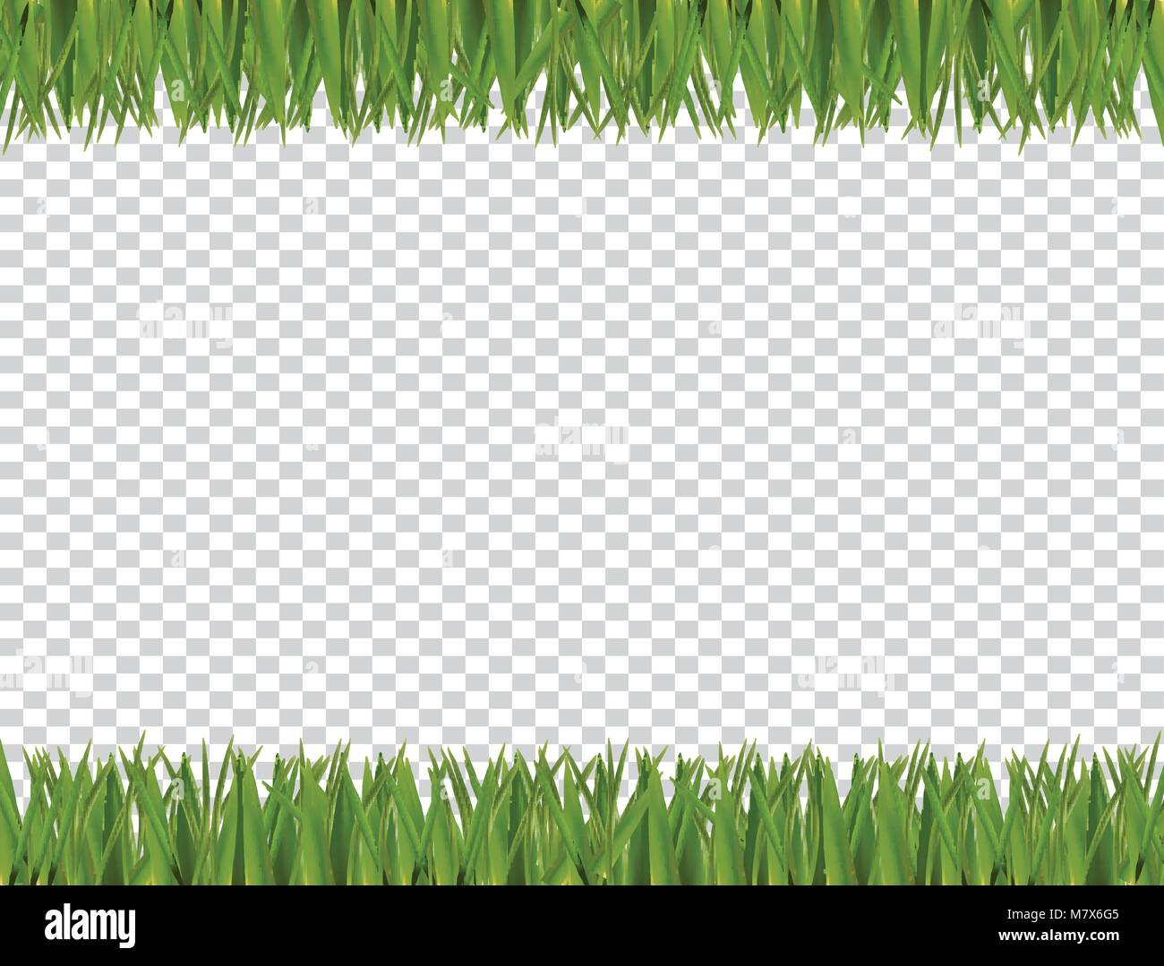 grass border no background realistic green realistic horizontal grass border frame isolated on transparent background with empty copy space for text spring or summer vector illustration stock