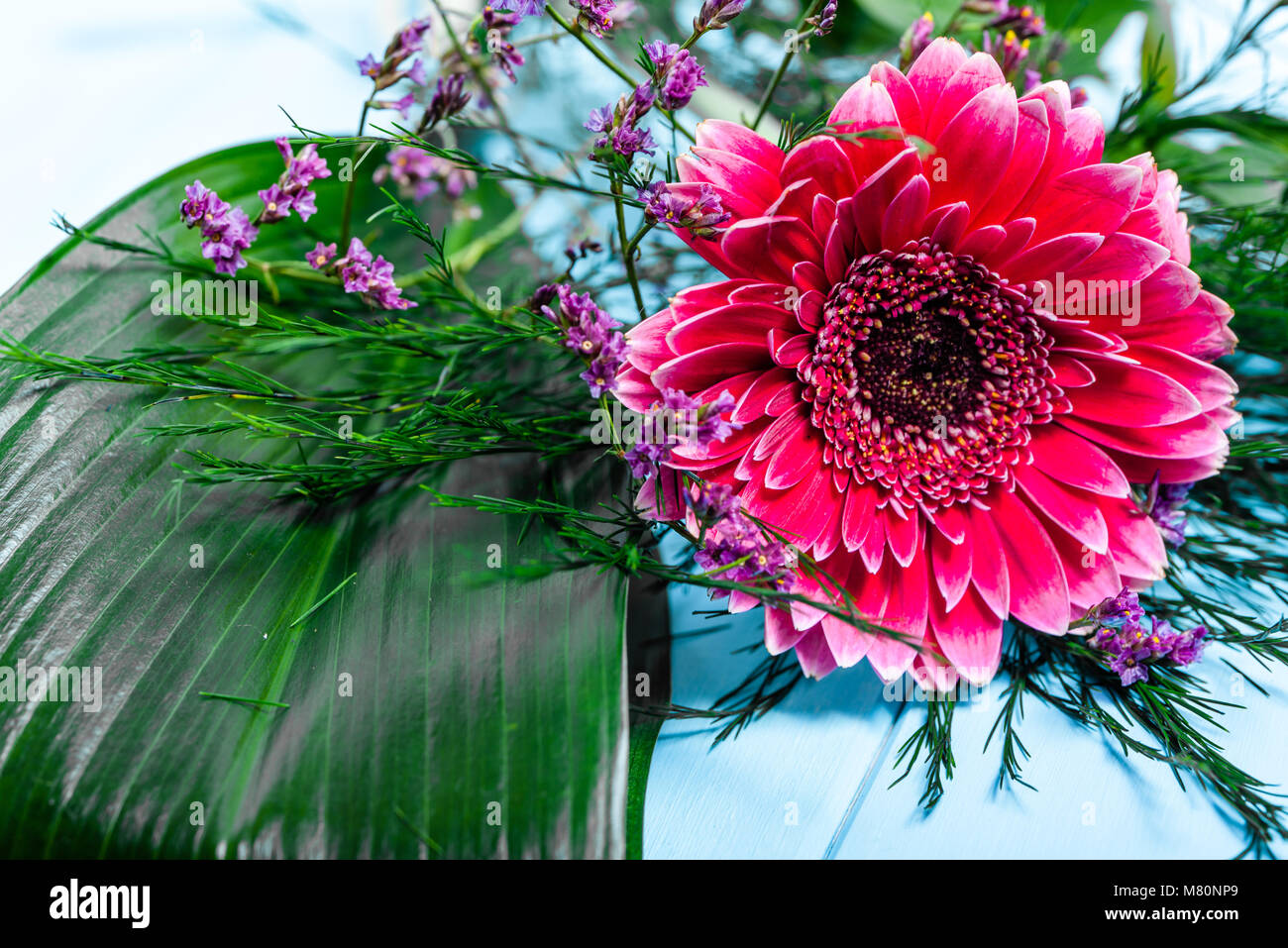 Pink Gerbera Flower Background For 8 March Women S Day Mothers
