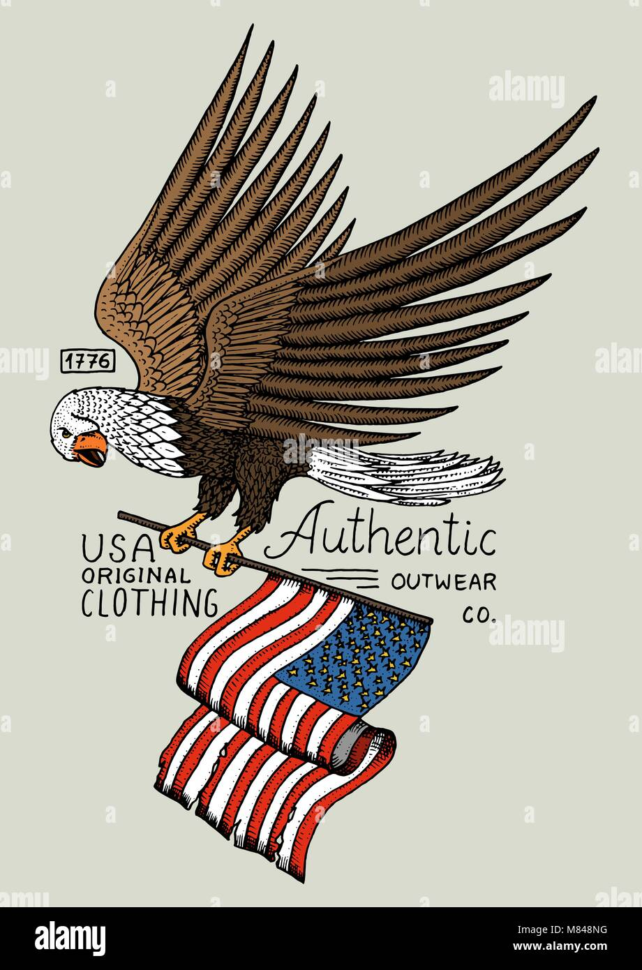 Native eagle american wild bird old label and badge engraved native eagle american wild bird old label and badge engraved hand drawn in old sketch usa symbol flag of patriot biocorpaavc Gallery