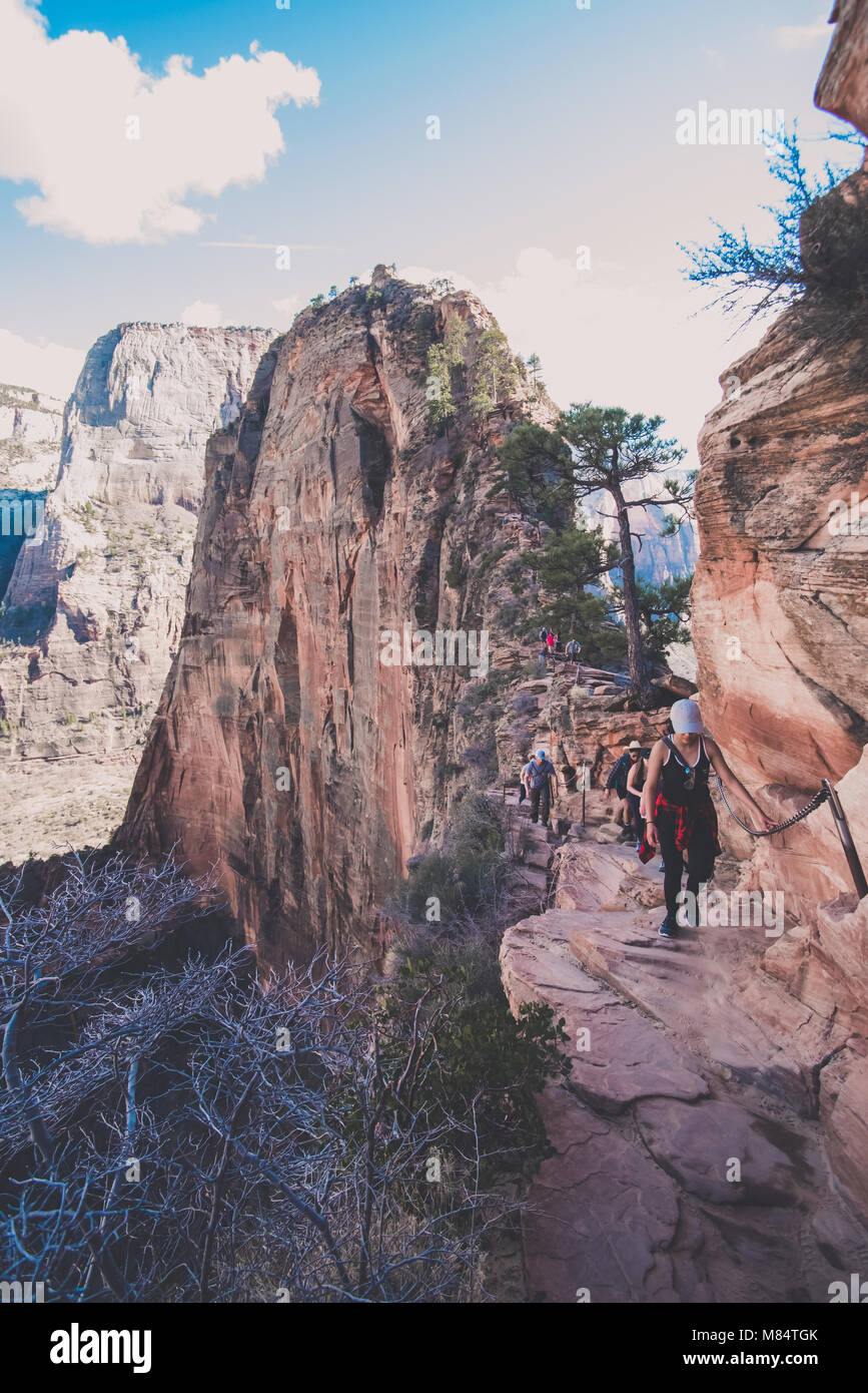 angels landing hike zion national park stock photo 177128019 alamy